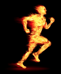 Fasted Cardio Results - Burning Calories